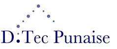 D.TEC PUNAISE